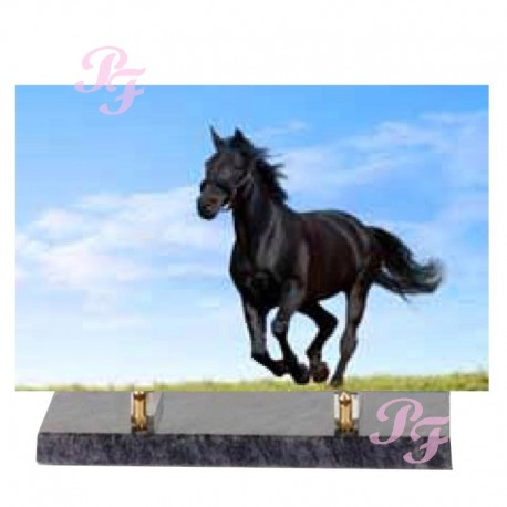 HORSE ALTUGLAS FUNERAL PLATE 30 * 20 * 25 or 35 BASIC