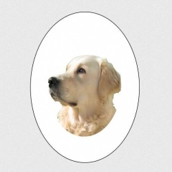 MEDALLION OVAL PORCELAIN COLOR PET