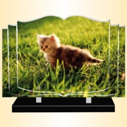 FUNERAL PLATE PETIT CHAT - BOOK ALTUGLAS